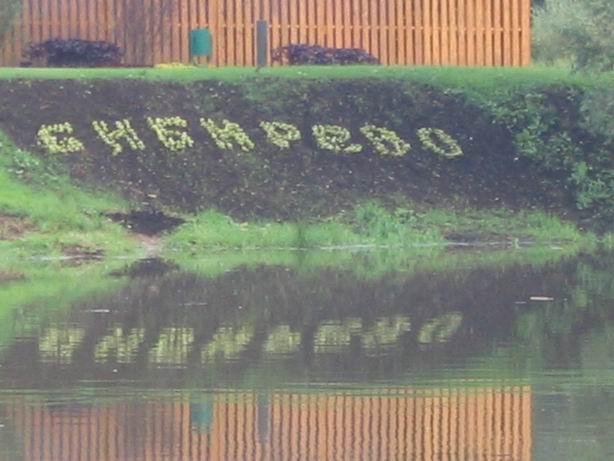 РАЙОН БИБИРЕВО, ГДЕ РАСПОЛОЖЕНА ШКОЛА 254 СВАО г. Москвы - http://shkola254.narod.ru